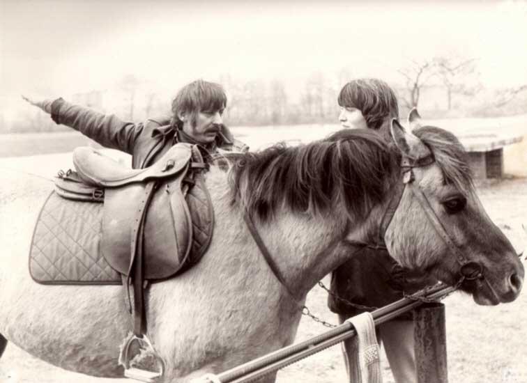 deckungsakt bei pferden