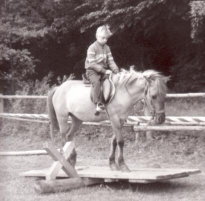 deckakt bei pferden und eseln